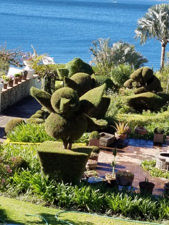 Hotel Atitlan: View of topiary from our balcony