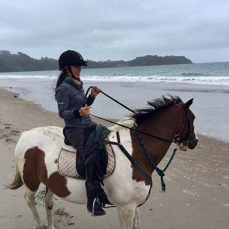 Waiheke Island, New Zealand: Is great experience of bush and beach horse riding. Though is raining in the middle of horse rid