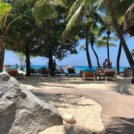 Petite Anse Kerlan: photo4.jpg