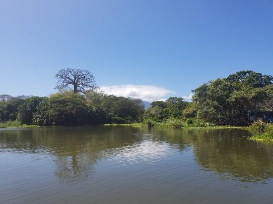 Granada, Nikaragua: 20180203_105501_large.jpg