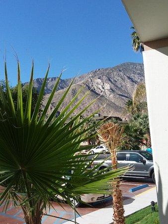 Palm Canyon Resort & Spa: 20180205_102038_large.jpg
