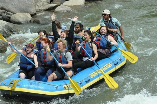 Animas River 4-Hour Rafting Excursion