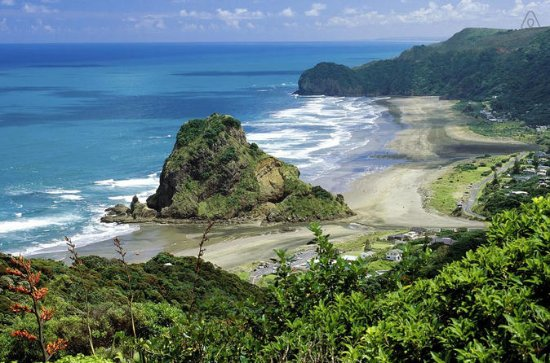 Piha and Waitakere Full-Day Ecotour...