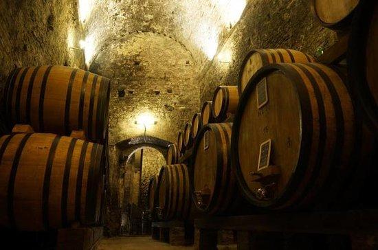 Degustação de vinhos e tour da mais...