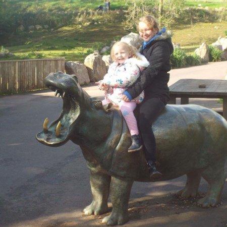 South Lakes Safari Zoo: photo3.jpg