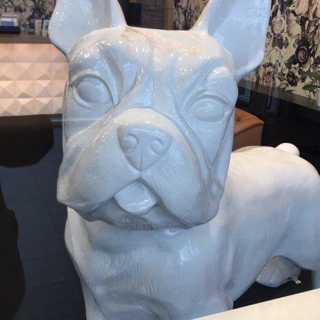 Le Bowl Dog