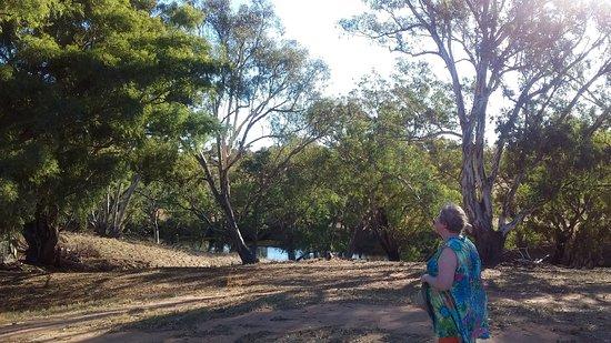 Axedale, Australia: River