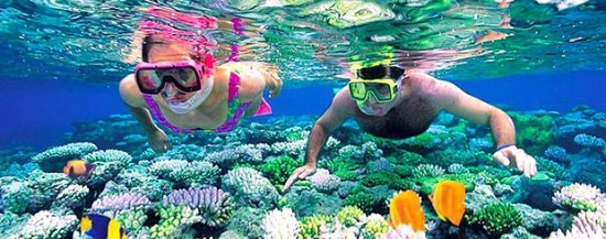 Sri Lanka Diving Tours - Trincomalee: In general we are diving in small groups with max
