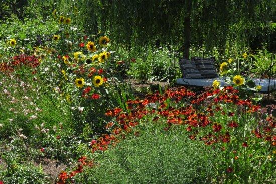 Jardin aux fleurs picture of le val de brangon baden for Jardin aux fleurs