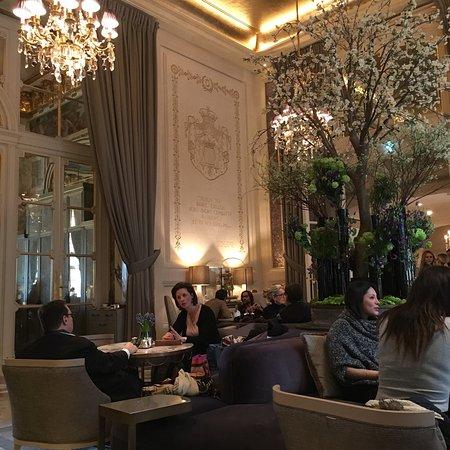 Photo0 Jpg Picture Of Jardin D Hiver Paris Tripadvisor