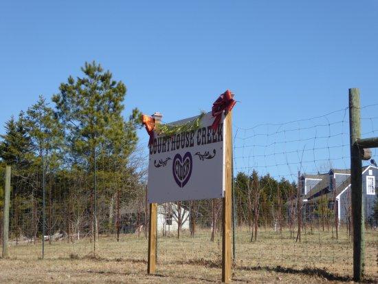Maidens, VA: Sign