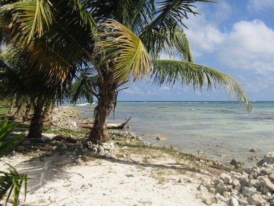 mahahual beach in costa maya mexico picture of mahahual beach rh tripadvisor co nz