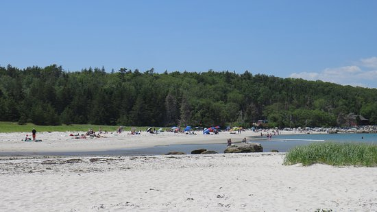 Port Mouton, Canadá: Picture of the beach, where you come in
