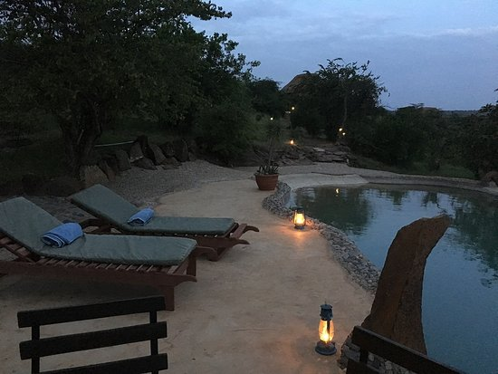 Amani Mara Camp: Dinner alongside the pool