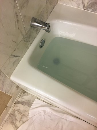 Water Does Not Drain In The Tub Takes Several Hours For Someone To - Bathroom tub water not draining
