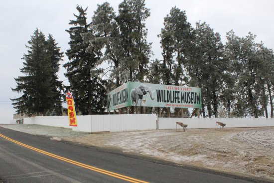 Ritzville, WA: The billlboard in front of the Lasting Legacy Wildlife Museum