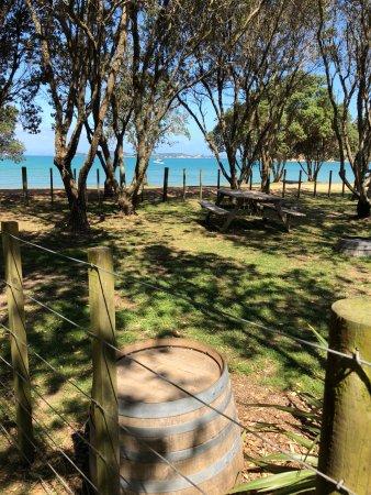 Waiheke Island, New Zealand: Man of War view of the beach
