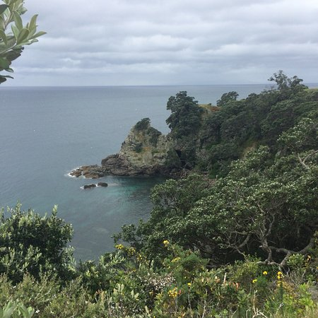 an overview of the tiritiri matangi reserve Tiritiri matangi is an island and nature reserve in the hauraki gulf near auckland in new zealand from tripcarta, the interactive travel guide.