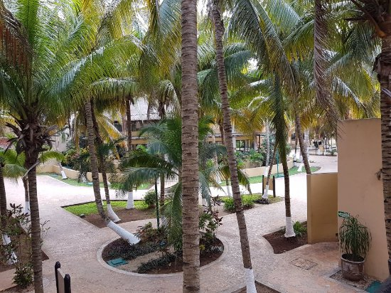 Hotel Reef Yucatán - All Inclusive & Convention Center: 20180210_150921_large.jpg