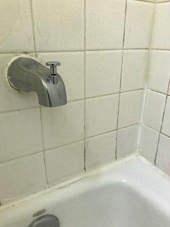 Garden City, جورجيا: Nasty bathroom tile...