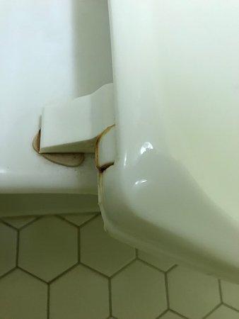 Garden City, جورجيا: Nasty toilet seat...