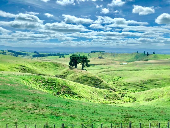 Hinuera, New Zealand: Hobbiton rolling hills