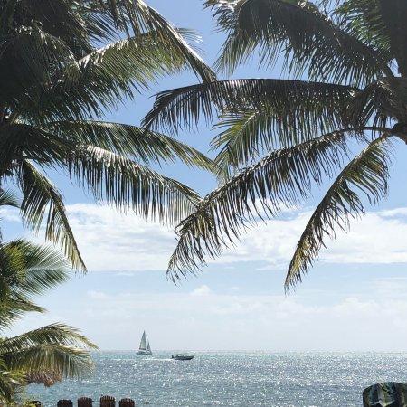 Xanadu Island Resort Photo