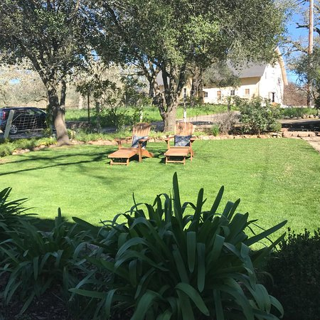 Beltane Ranch: photo4.jpg