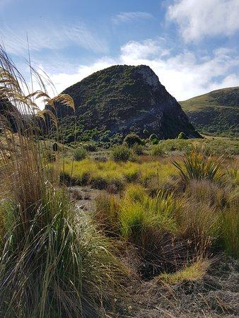 Okia Reserve