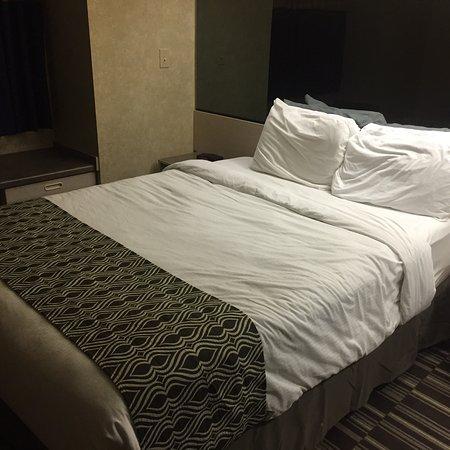 Microtel Inn & Suites by Wyndham Decatur: photo0.jpg