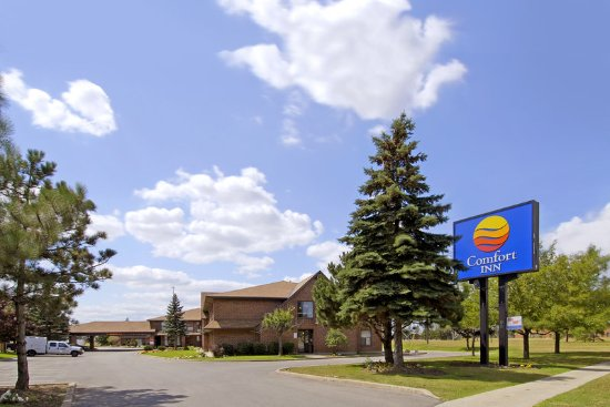 Comfort Inn Toronto North: Business center