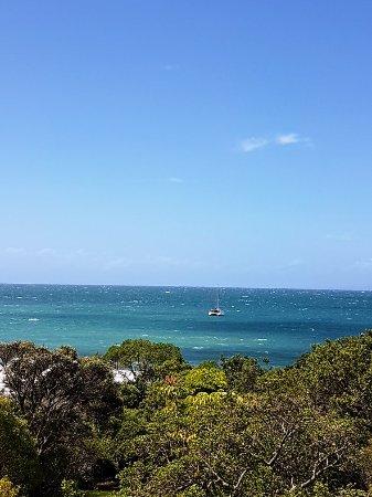Waiheke Island, New Zealand: 20180207_151432~2_large.jpg
