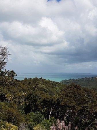 Waiheke Island, New Zealand: 20180207_123619_large.jpg