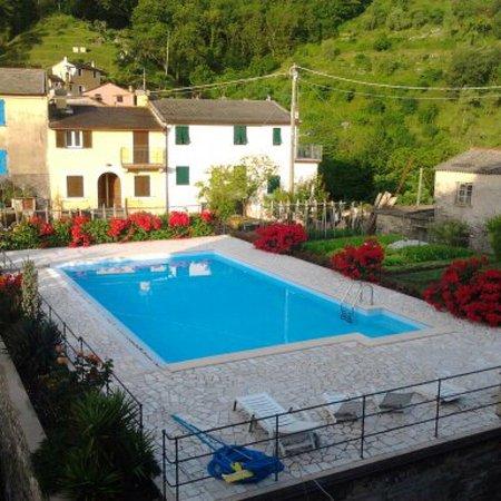 B&B Le Rondini: La piscina