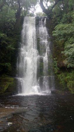 McLean Falls: Main falls