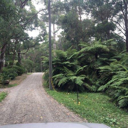 Belgrave, Austrália: Minak Reserve