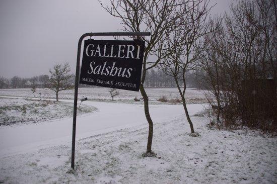 Galleri Salshus.
