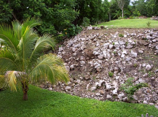 Piste, México: An unrestored Mayan pyramid is in our garden among the tropical vegetation.