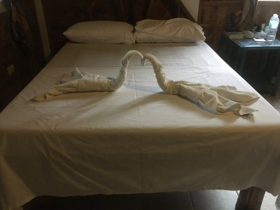 The Shark's Tail Dive Resort: One of the comfortable beds in our AC room