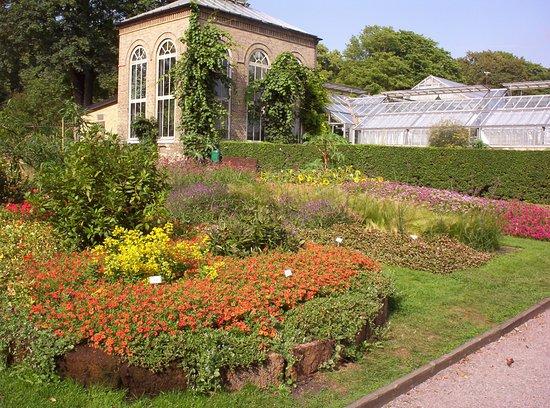 Botanical Gardens (Botaniska Tradgarden) صورة فوتوغرافية