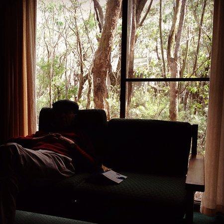 Blackheath, Australien: photo1.jpg