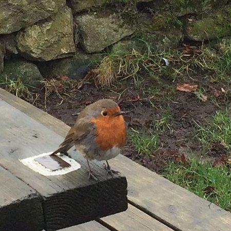 Appletreewick, UK: photo0.jpg