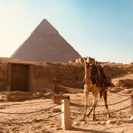 Egypt Trip Tours - Day Tours