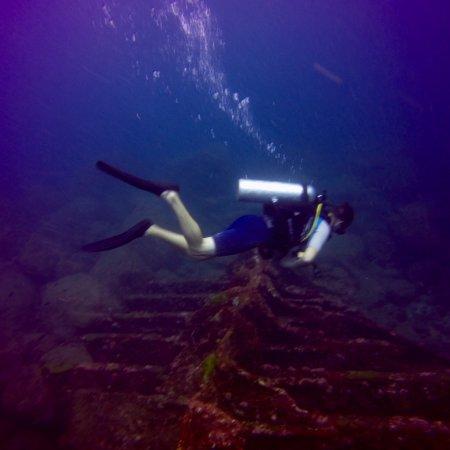 Blue deep dive centre hikkaduwa 2018 ce qu 39 il faut - Deep blue dive centre ...
