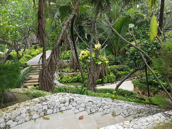 Padma Resort Legian: 20180129_101208_large.jpg