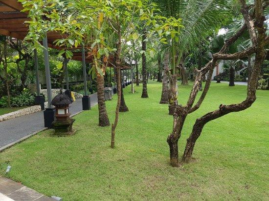 Padma Resort Legian: 20180129_101441_large.jpg