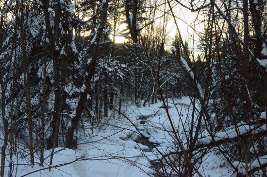 Wentworth Nord, Canadá: petit ruisseau a Laurel Aventure ...