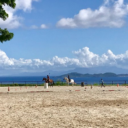 Trois Rivieres, Guadeloupe: photo0.jpg