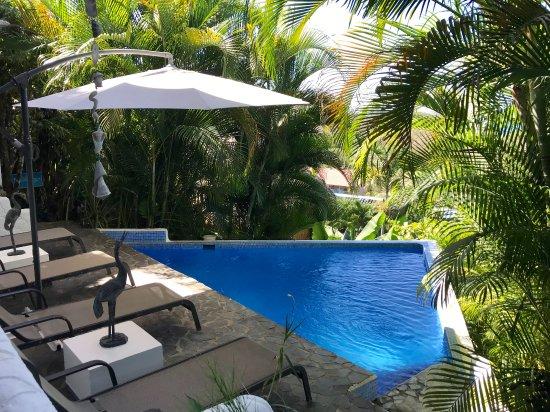 Horizon Ocean View Hotel and Yoga Center: Poolside