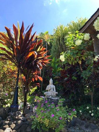 Horizon Ocean View Hotel and Yoga Center: Gardens